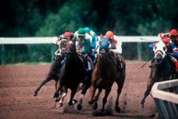Horse Racing, Derby, Mid-race